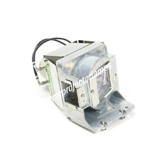 Viewsonic PJD6552W Projector Lamp with Module