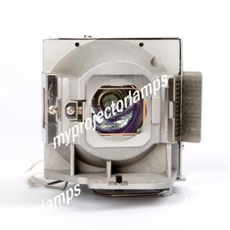 Viewsonic RLC-079 Projector Lamp with Module