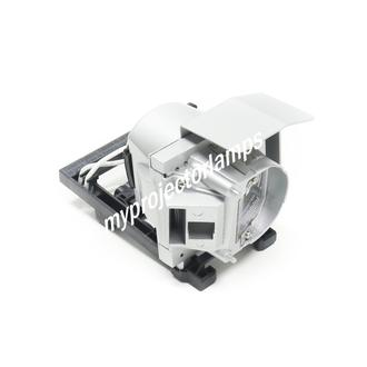 Viewsonic RLC-082 Projector Lamp with Module