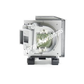Viewsonic PJD8353S-1W Projector Lamp with Module