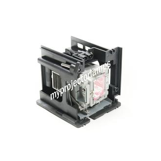 Vivitek D5110W Projector Lamp with Module