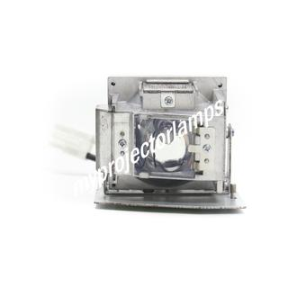Vivitek D510 Projector Lamp with Module
