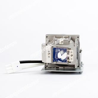 Vivitek D536-3D Projector Lamp with Module