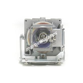 Vivitek D54HA Projector Lamp with Module