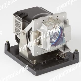 Vivitek D795WT Projector Lamp with Module