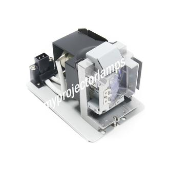 NEC NEC 5811118004-SVV Projector Lamp with Module