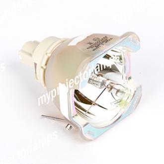Vivitek D8300 Bare Projector Lamp