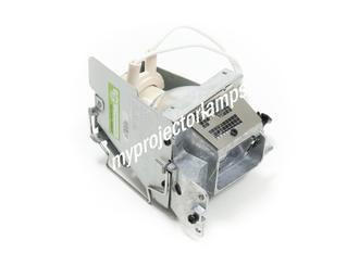 Infocus IN225 Projector Lamp with Module