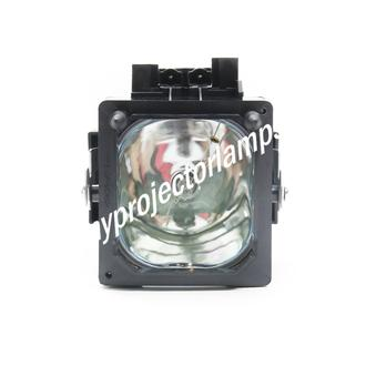 Sony F93087600 Projector Lamp with Module